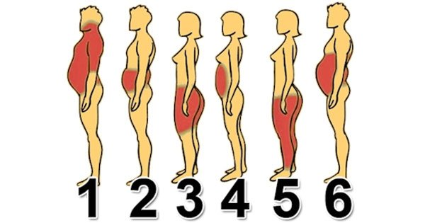 where you re storing fat the most will give you a good clue for