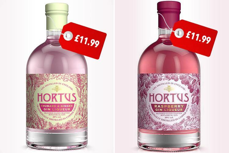 lidl s raspberry and rhubarb gin are back and they 39 re. Black Bedroom Furniture Sets. Home Design Ideas