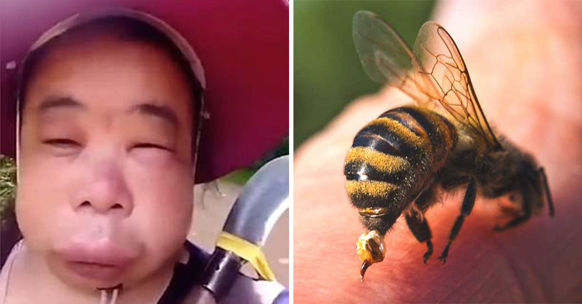 Chinese Woman Immediately Regrets Trying To Steal Honey