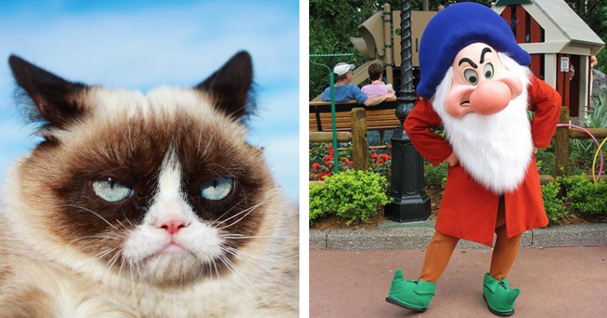 Grumpy People Are The BEST! And Here's Why…