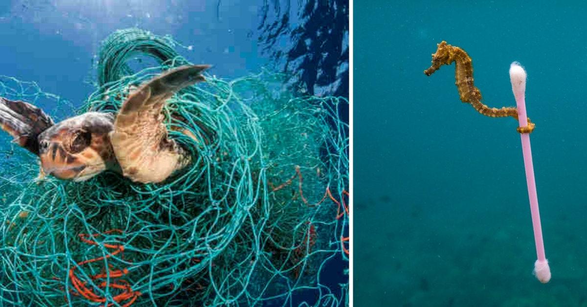 20 Heartbreaking Photos That Show The Horrifying Consequences Of Planet Pollution
