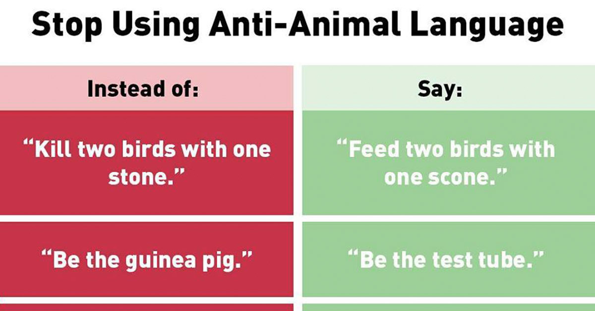 """Anti-Animal Language"" – Has PETA Officially Gone Too Far? (Yes, It Has.)"