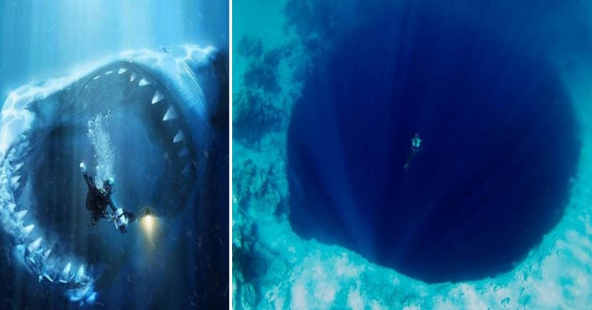 If You Feel Uncomfortable Looking At These Images, Then You Might Suffer From Thalassophobia!!