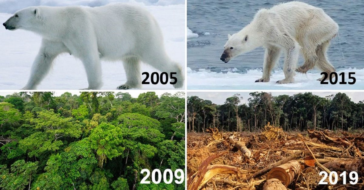 20 Very Sobering Nature Photos For The 10 Year Challenge