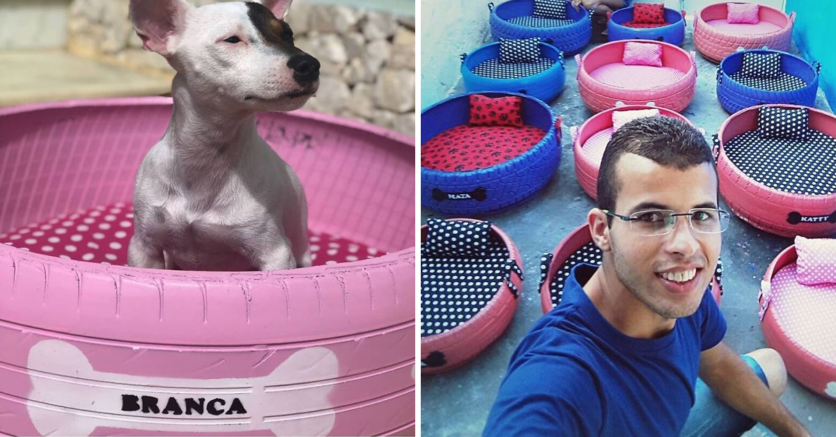 This Young Artist Upcycles Tires Into Beds For Brazil's Stray Dogs