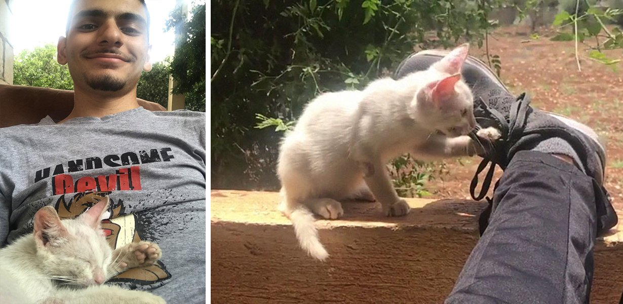 Young Man Wakes Up With Stray Kitten On Top Of Him, Decides To Adopt Her As His First Pet