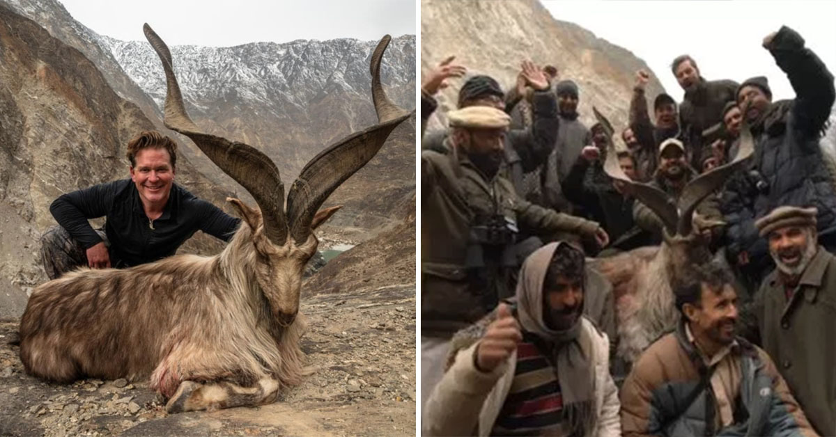 American Trophy Hunter Pays $110, 000 To Kill Rare Mountain Goat In Pakistan